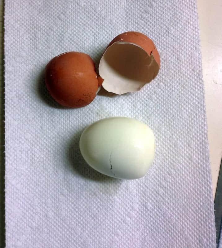 peeled egg