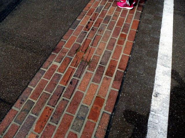 mini marathon 2014 15