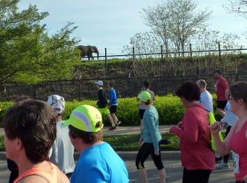 mini marathon 2014 7