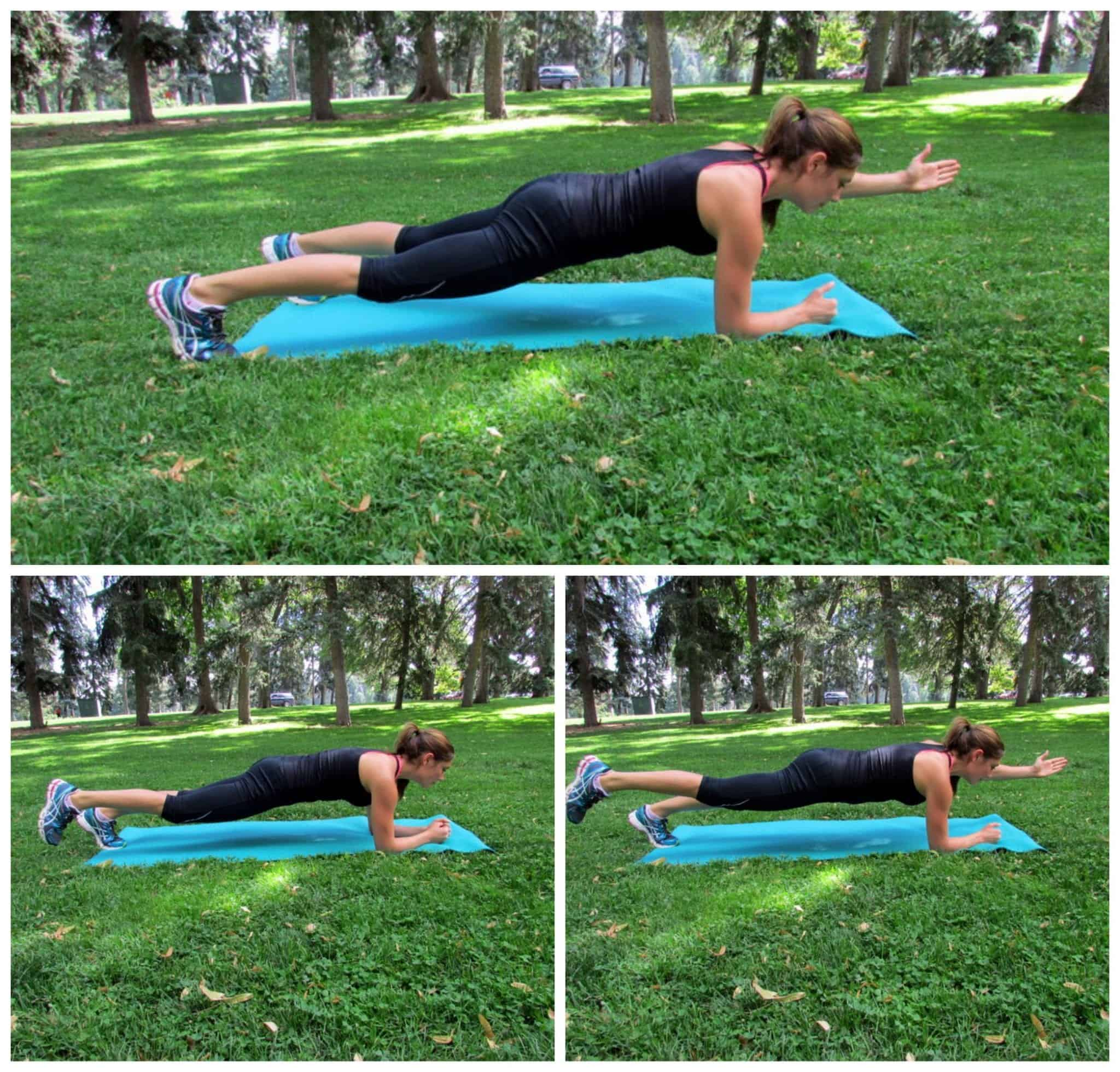 Plank with arm or leg lift