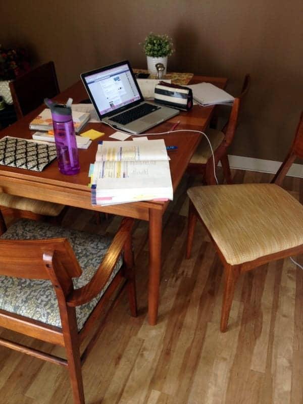 Tara study area