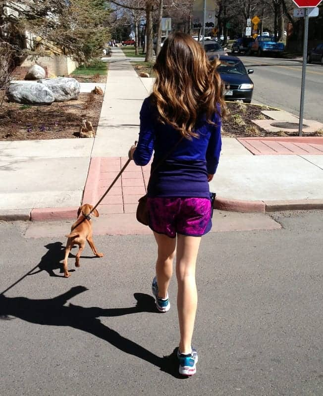 tara walking bernie