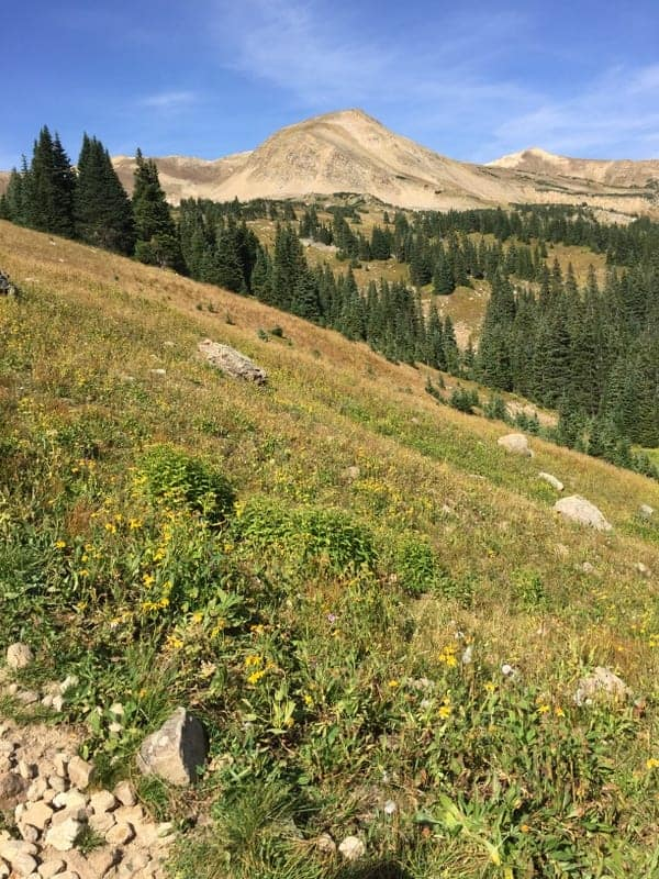 Butler Gulch Hike Colorado