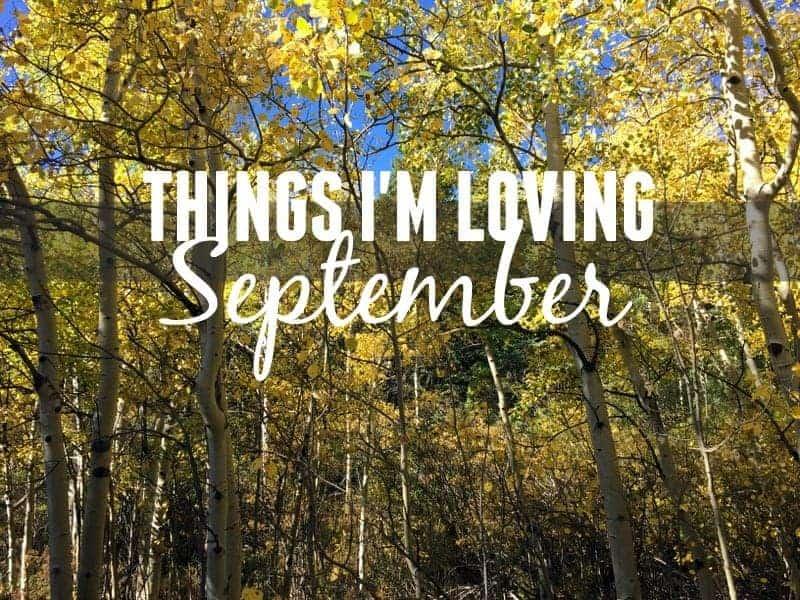 Things I'm Loving September Treble in the KItchen