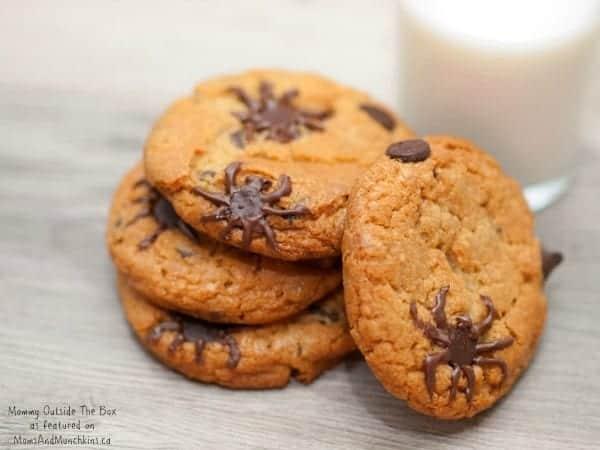 chocolate-chip-spider-cookie-5