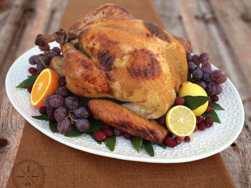 ThanksgivingTurkey01