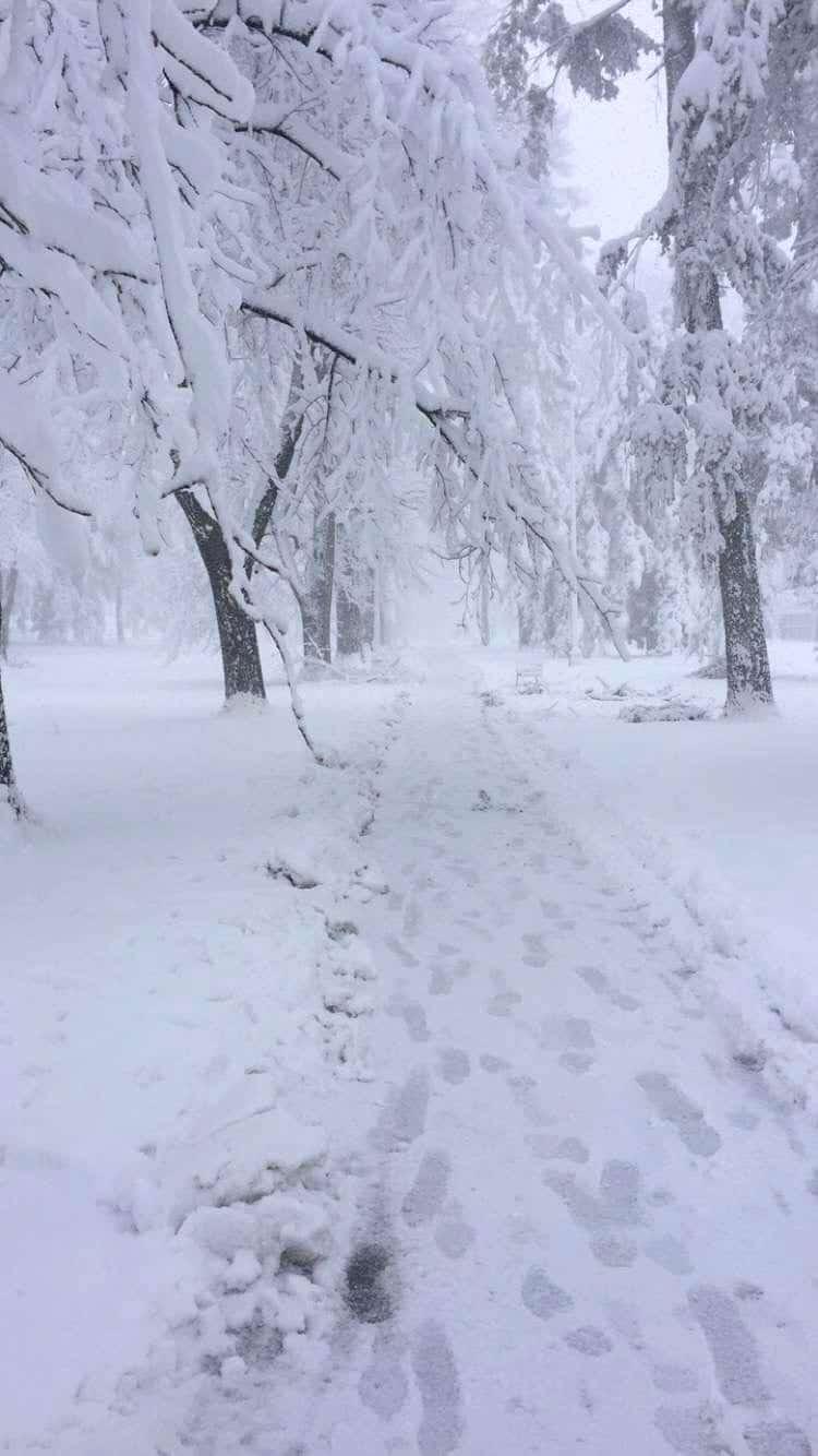 Blizzard in Denver