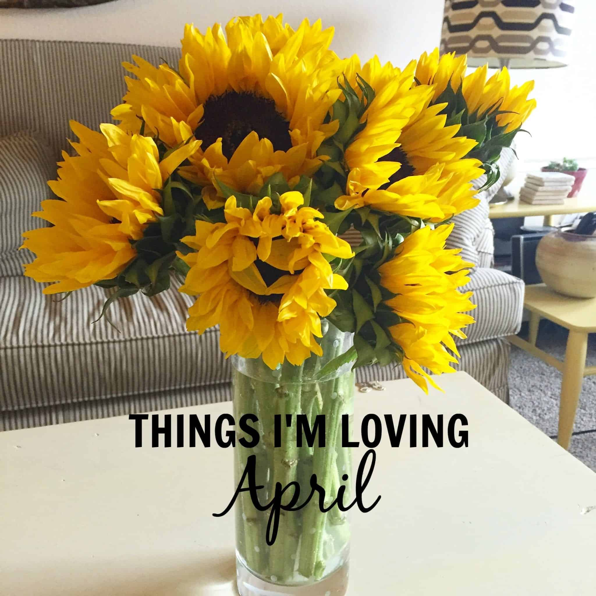 Things I'm Loving April 2016 from Treble in the Kitchen