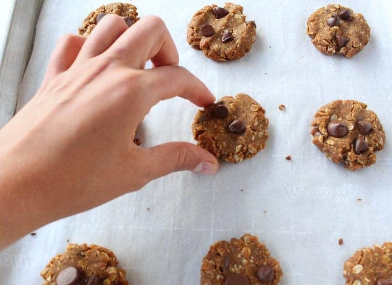 Sweet Potato Oatmeal Snack Cookies low FODMAP, vegan, dairy free, gluten free