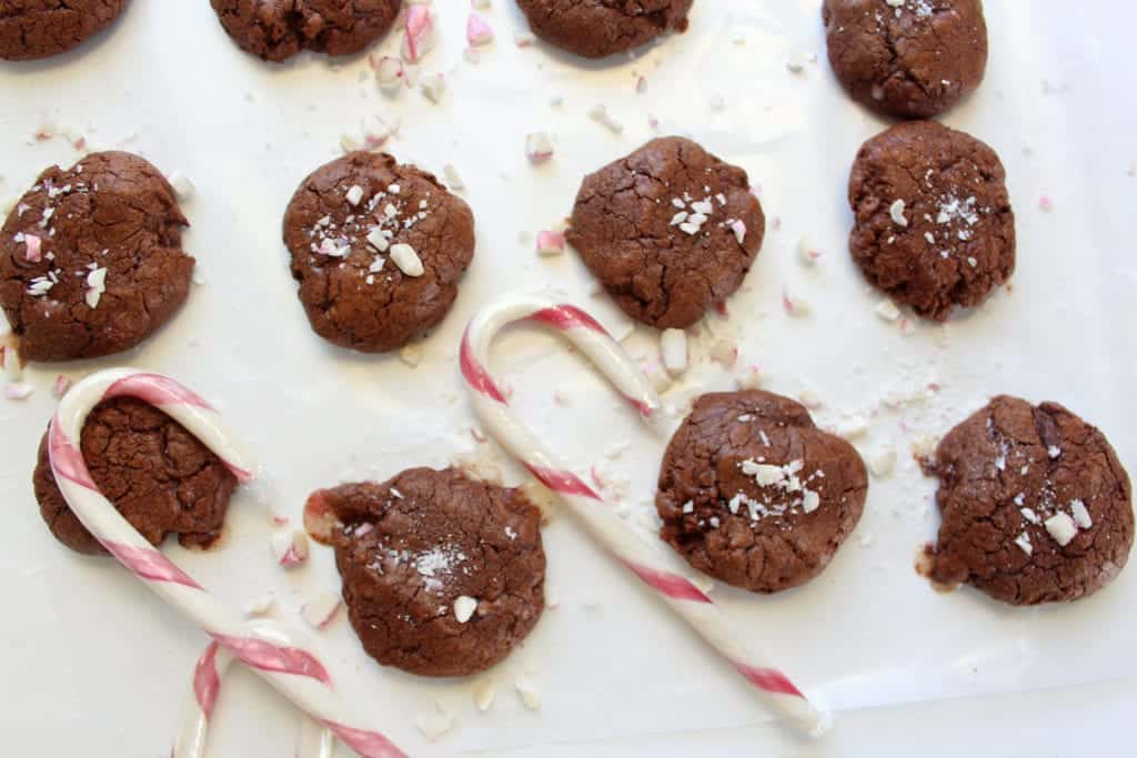 low FODMAP Peppermint Cocoa Cookies - gluten free, lactose free