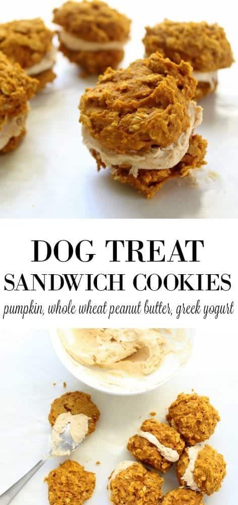 Dog Treat Sandwich Cookies