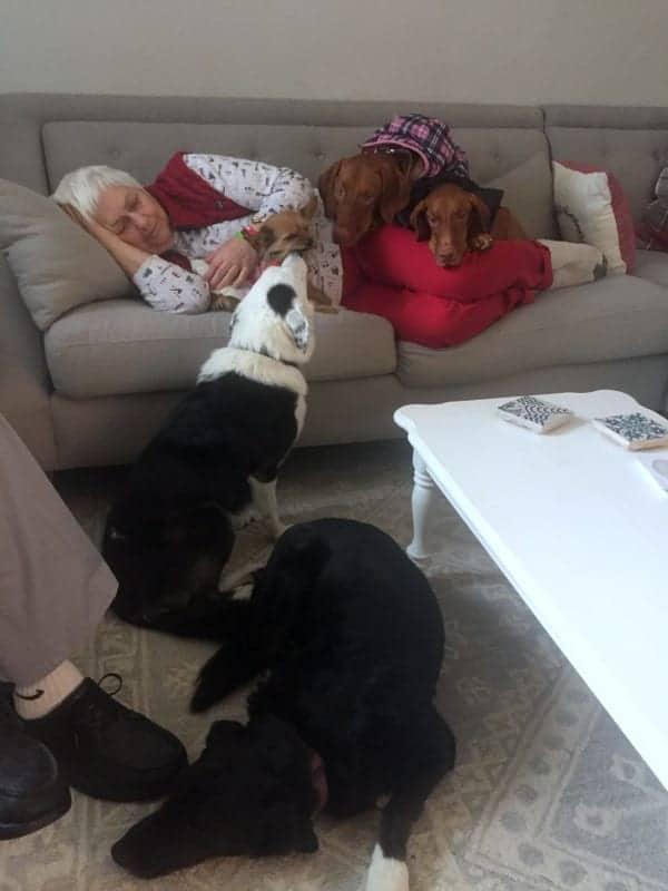 Grandma Christmas