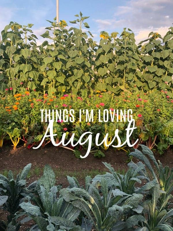 Things I'm Loving August 2018